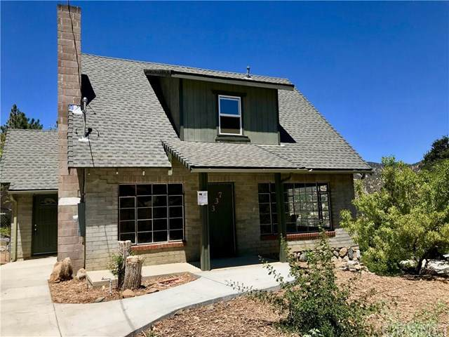 337 Arizona, Frazier Park, CA 93225 (#SR20160492) :: Randy Plaice and Associates