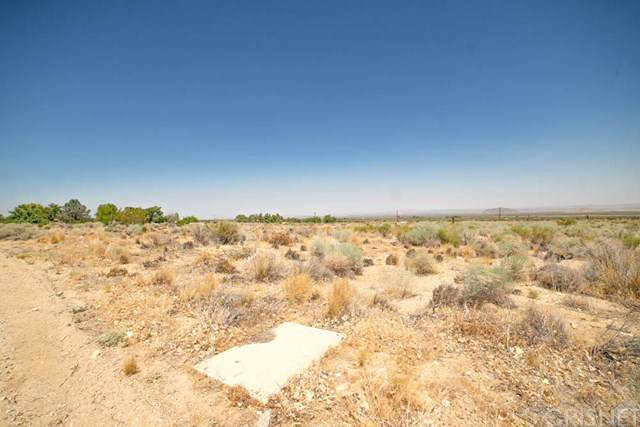 238 Vac/Cor Avenue Y3 Drt /228 Ste, Llano, CA 93544 (#SR20161783) :: Lydia Gable Realty Group