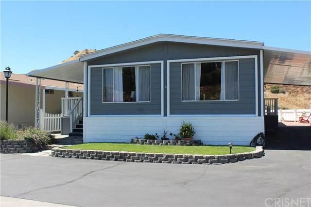 30000 Sand Canyon Road #28, Canyon Country, CA 91387 (#SR20162204) :: Randy Plaice and Associates