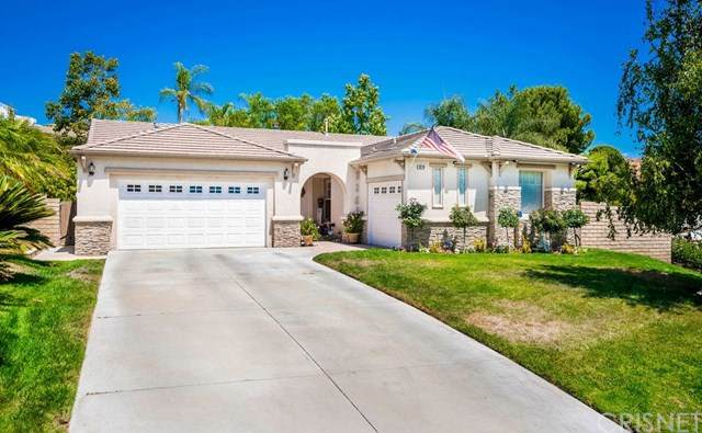 28218 Tambora Drive, Canyon Country, CA 91351 (#SR20164019) :: Randy Plaice and Associates