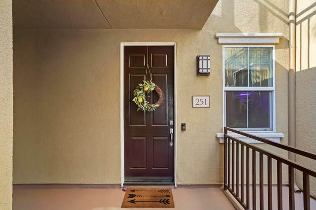 259 Riverdale Court #251, Camarillo, CA 93012 (#V0-220009180) :: Randy Plaice and Associates
