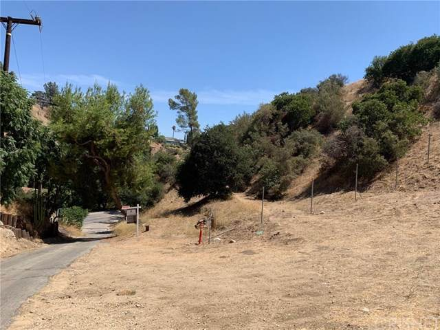 12105 Wildwood Trail, Kagel Canyon, CA 91242 (#SR20176615) :: The Parsons Team