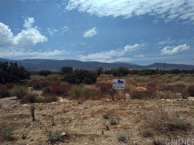 0 Hwy 138 / Ft Tejon Road, Llano, CA 93544 (#SR20177932) :: HomeBased Realty