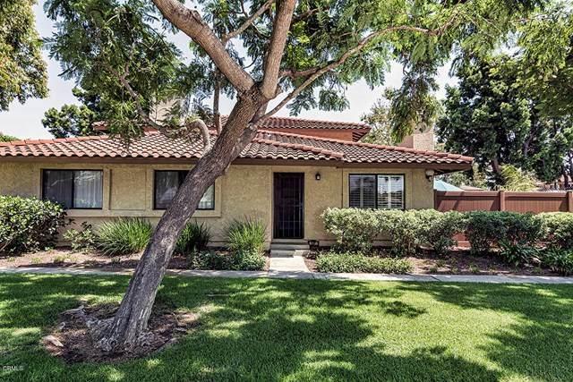 587 Doyle Lane, Ventura, CA 93003 (#V1-1151) :: Compass