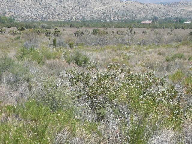 0 Vac/Juniper Hills Rd/Vic 121 S, Juniper Hills, CA 93543 (#SR20191624) :: Compass