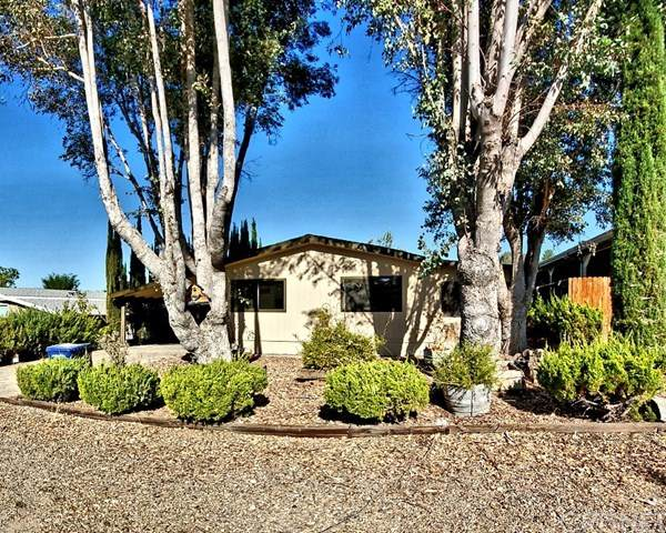 3025 Water View Drive, Paso Robles, CA 93446 (#SR20194422) :: Randy Plaice and Associates