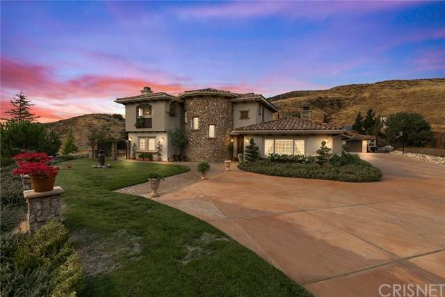 11043 Elizabeth Lake Road, Leona Valley, CA 93551 (#SR20195267) :: Randy Plaice and Associates