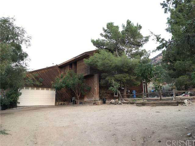520 E Soledad Pass Road, Palmdale, CA 93550 (#SR20195893) :: Compass