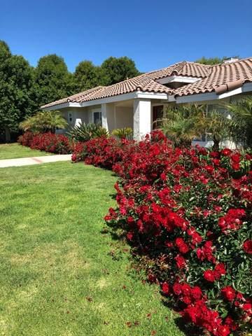 10587 Chippenham Road, Santa Rosa, CA 93012 (#220009860) :: TruLine Realty