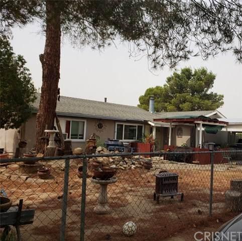 40247 166th Street E, Palmdale, CA 93591 (#SR20201009) :: Compass
