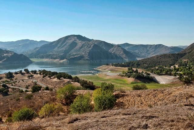 5191 Piru Canyon Road, Piru, CA 93040 (#V1-1575) :: TruLine Realty