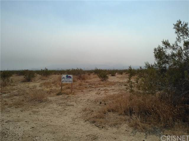 0 Ave T Vic 180 St East, Llano, CA 93591 (#SR20202384) :: HomeBased Realty