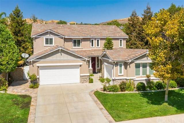 28269 Foxlane Drive, Canyon Country, CA 91351 (#SR20200329) :: TruLine Realty