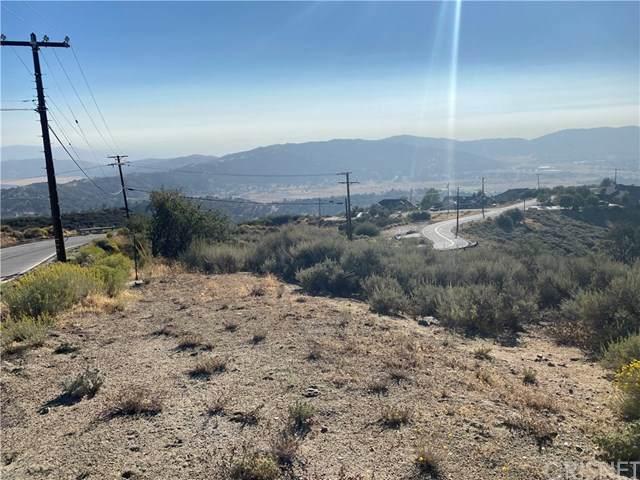 24221 Jacaranda Drive, Tehachapi, CA 93561 (#SR20204762) :: Lydia Gable Realty Group