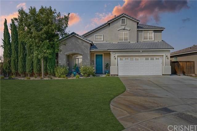 3219 Desert Moon Avenue, Rosamond, CA 93560 (#SR20208483) :: TruLine Realty