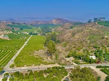 0 Foothill Road, Santa Paula, CA 93060 (#V1-1831) :: Randy Plaice and Associates