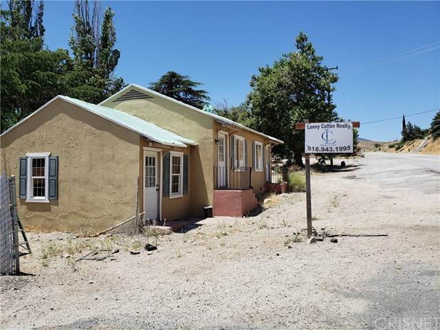 49771 Gorman Post Road, Gorman, CA 93243 (#SR20216603) :: The Grillo Group