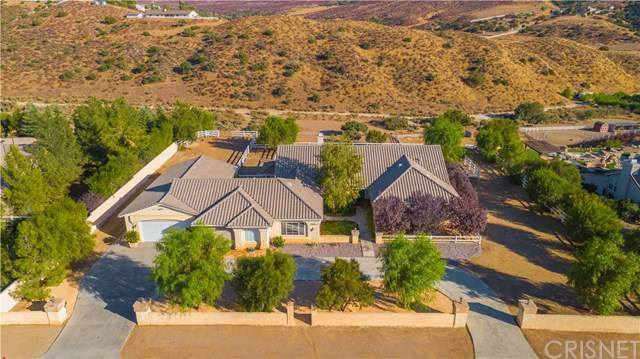 34848 Caprock Road, Agua Dulce, CA 91390 (#SR20217782) :: Randy Plaice and Associates