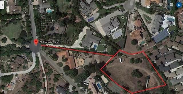 102 Avocado Place, Camarillo, CA 93010 (#V1-2061) :: TruLine Realty