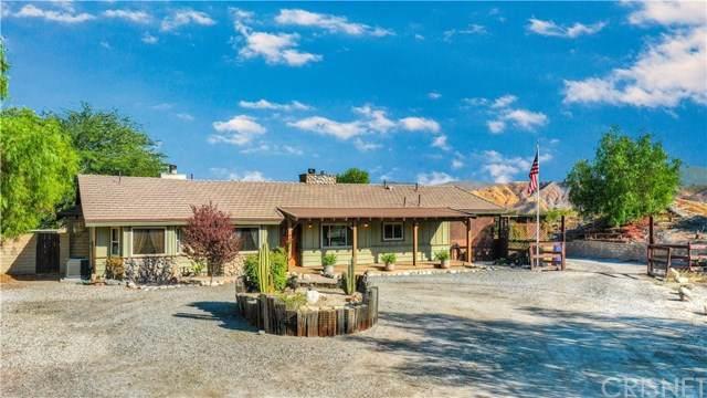 29932 Louis Avenue, Canyon Country, CA 91351 (#SR20222565) :: Randy Plaice and Associates