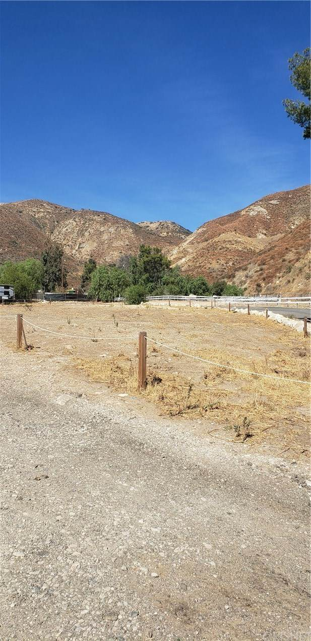 13807 Kagel Canyon Rd, Kagel Canyon, CA 91342 (#SR20228529) :: Compass
