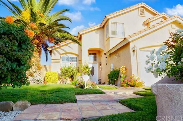 5551 Cedarpine Court, Palmdale, CA 93552 (#SR20229071) :: Arzuman Brothers