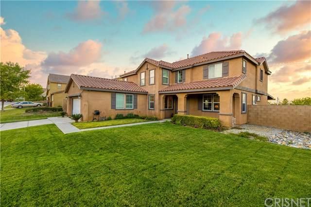 6831 Miramar Lane, Palmdale, CA 93551 (#SR20229244) :: TruLine Realty