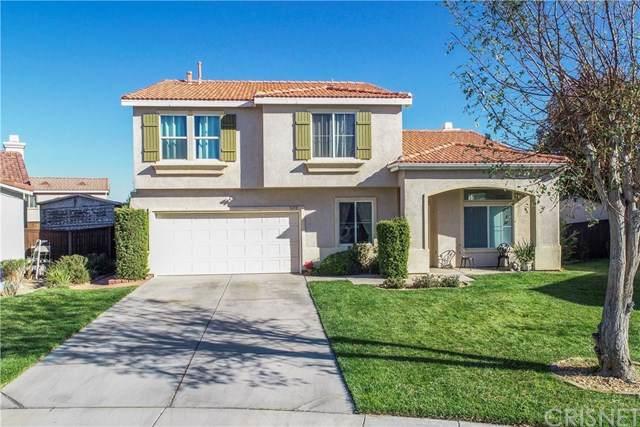 3650 Desert Oak Drive, Palmdale, CA 93550 (#SR20229938) :: TruLine Realty