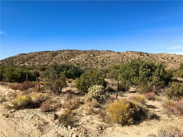0 Z14e Lepage Ranch Rd, Juniper Hills, CA 93543 (#SR20232451) :: Lydia Gable Realty Group