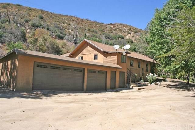 43156 Lake Hughes Road, Lake Hughes, CA 93532 (#SR20227250) :: Arzuman Brothers