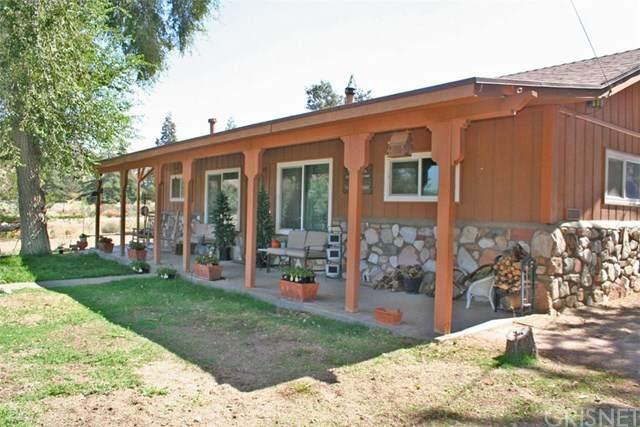 26750 Pine Canyon Road, Lake Hughes, CA 93532 (#SR20234004) :: Arzuman Brothers