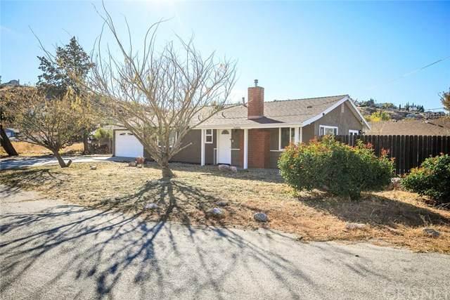 14404 Ashtree Drive, Lake Hughes, CA 93532 (#SR20237821) :: Arzuman Brothers