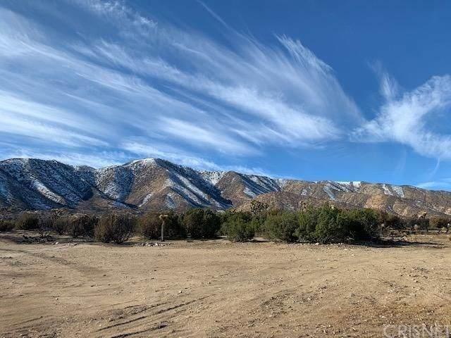 0 Murphys Lane, Juniper Hills, CA 93543 (#SR20238692) :: Lydia Gable Realty Group