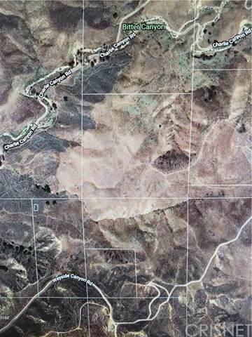 0 Charlie Canyon/Tapia Canyon - Photo 1