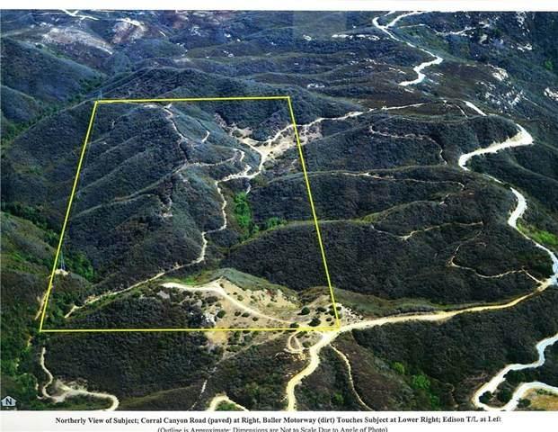 0 Baller Motorway, Malibu, CA 90265 (#SR20243978) :: Lydia Gable Realty Group