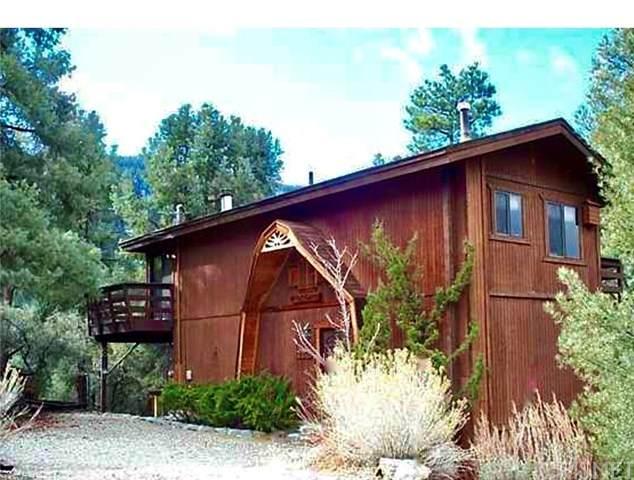 2321 Ironwood Dr, Pine Mtn Club, CA 93222 (#SR20243548) :: Arzuman Brothers