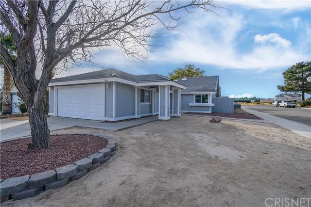 3441 Citrine Lane, Rosamond, CA 93560 (#SR20245326) :: Lydia Gable Realty Group