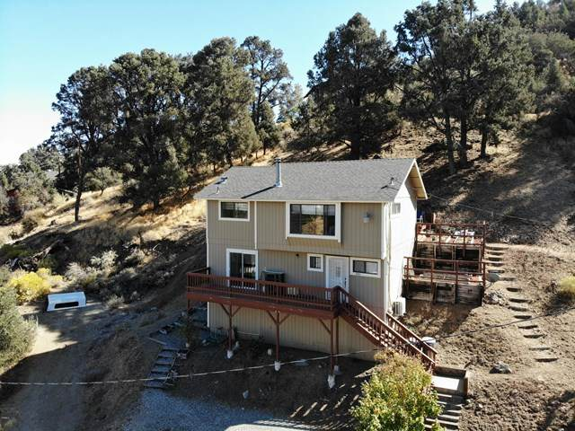 336 Valley Trail, Frazier Park, CA 93225 (#V1-2705) :: Lydia Gable Realty Group