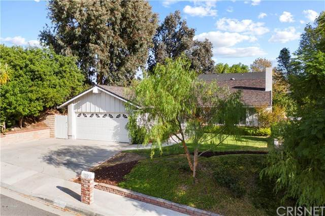 28442 Alder Peak Avenue, Canyon Country, CA 91387 (#SR20245868) :: TruLine Realty