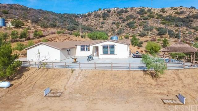 35495 Larchfork Road, Acton, CA 93510 (#SR20246683) :: Lydia Gable Realty Group
