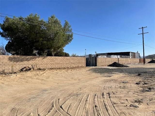 42336 5th Street E, Lancaster, CA 93535 (#SR20247243) :: Lydia Gable Realty Group