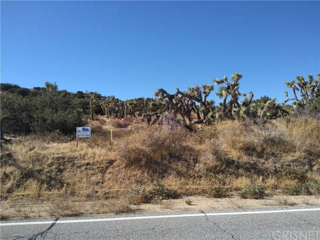0 Longview Rd  S/O Old Homestead Rd, Juniper Hills, CA 93543 (#SR20248090) :: Arzuman Brothers
