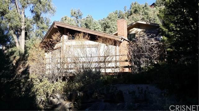1712 Matterhorn Drive, Pine Mtn Club, CA 93222 (#SR20248467) :: Arzuman Brothers