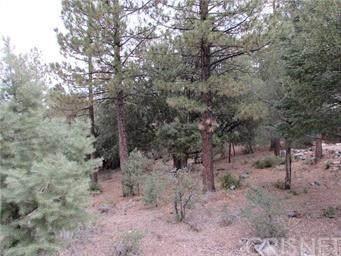1813 Woodland Drive, Pine Mtn Club, CA 93225 (#SR20250972) :: HomeBased Realty