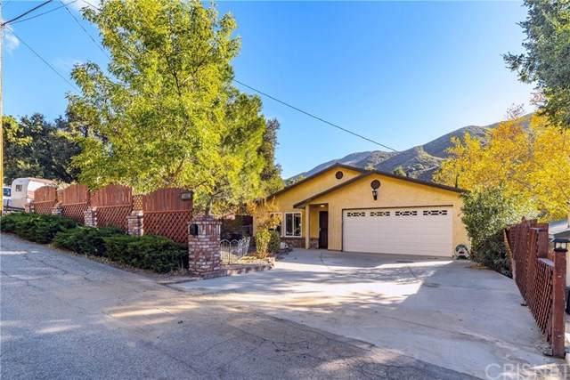 15602 Calle Hermosa, Green Valley, CA 91390 (#SR20250518) :: Randy Plaice and Associates
