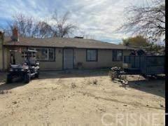 9726 E Avenue S, Littlerock, CA 93543 (#SR20256239) :: Randy Plaice and Associates