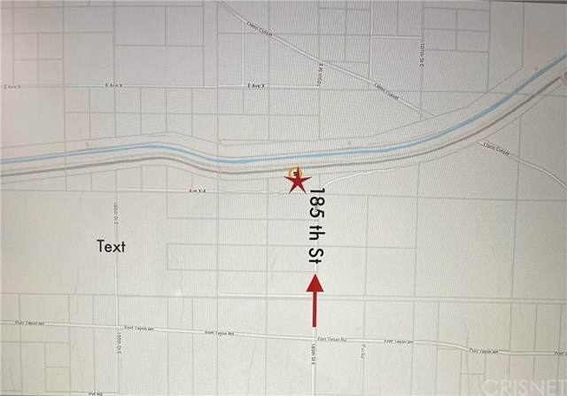 18501 Fort Tejon Road, Llano, CA 93544 (#SR20258479) :: Eman Saridin with RE/MAX of Santa Clarita