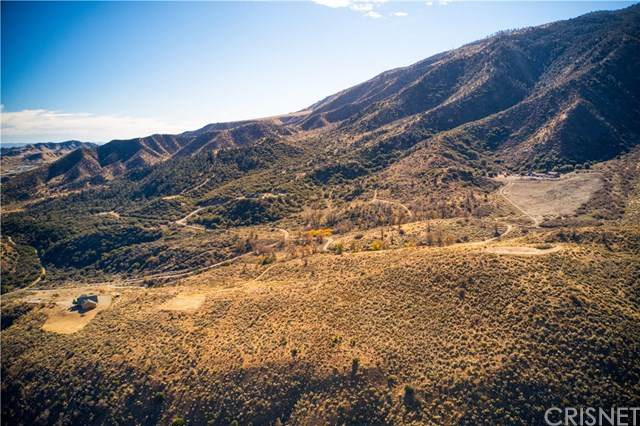 3 Valley Oak Way, Lebec, CA 93243 (#SR20260877) :: Montemayor & Associates