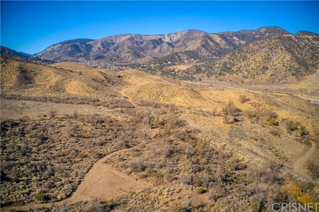 6 Grand Terrace Dr, Lebec, CA 93243 (#SR20260946) :: Randy Plaice and Associates