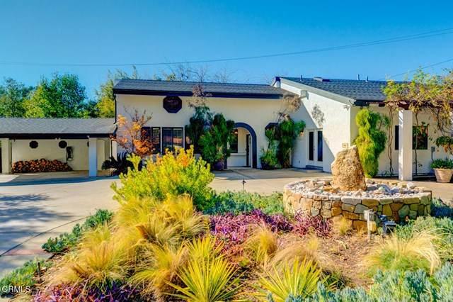 405 Palomar Road, Ojai, CA 93023 (#V1-3170) :: Lydia Gable Realty Group